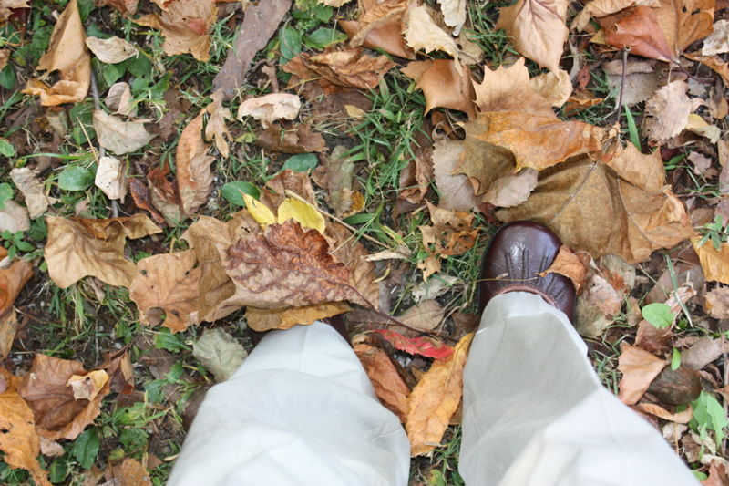 October 2008 275
