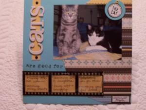 Kitties_001